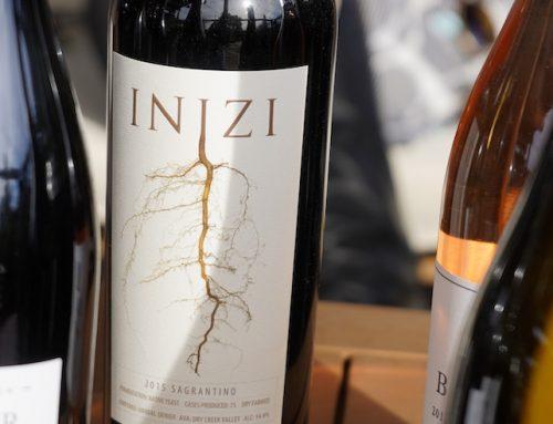 INIZI Wines: New Beginnings
