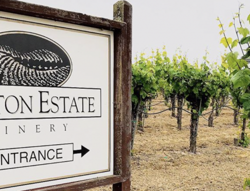 Dutton Estate Winery's Commitment to Sustainability